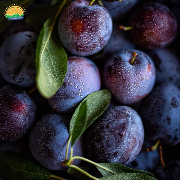 بهترین میوهها برای کم خونی: 4. آلو جزو بهترین میوهها برای کم خونی