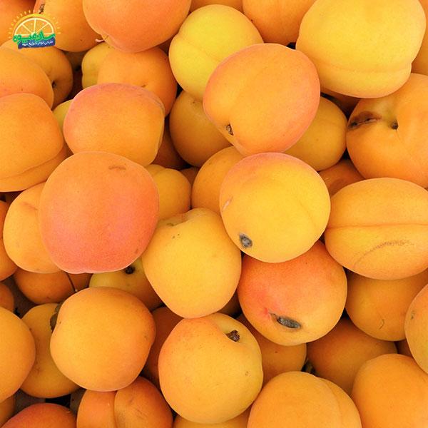 بهترین میوهها برای سلامت قلب: 2. زردآلوی ضد سرطان و سکته