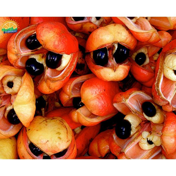 عجیبترین میوههای دنیا - سیب آکی