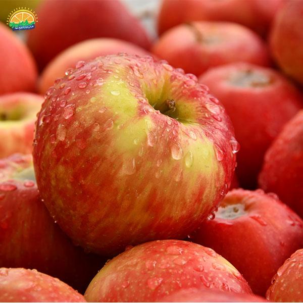 سیب میوهای مفید برای افراد دیابتی