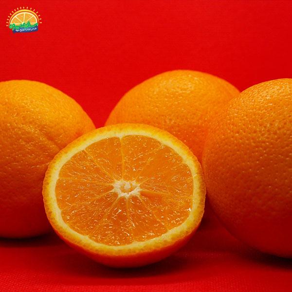 بهترین میوهها برای کم خونی: 5. پرتقال سرشار از اسید آسکوربیک