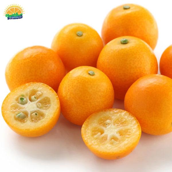 بهترین میوهها برای آنمی: 9. کامکوات - پرتقال مینیاتوری برای درمان کم خونی