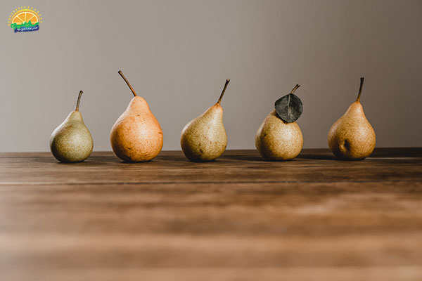 بهبود عملکرد دستگاه گوارش با گلابی یک میوه پاییزی محبوب