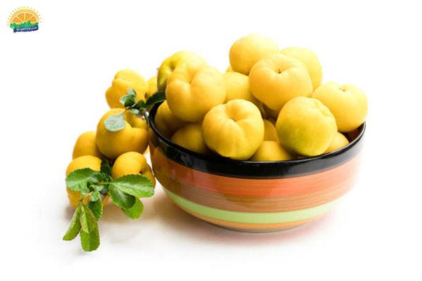 معرفی میوه های پاییزی: 11. به خوش عطرترین میوهی پاییزی