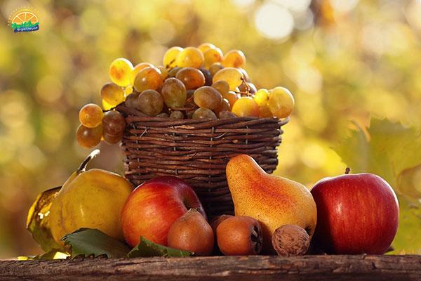 میوه های پاییزی کدامند؟