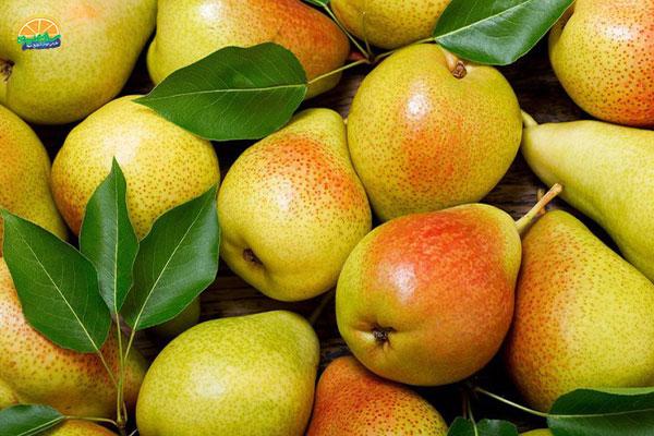نحوهی مصرف میوه پاییزی گلابی