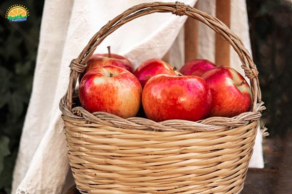 نحوهی مصرف سیب پاییزی