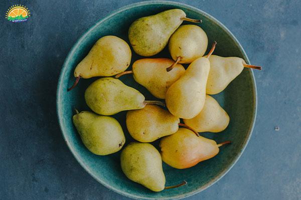 میوه های پاییزی: 2. گلابی