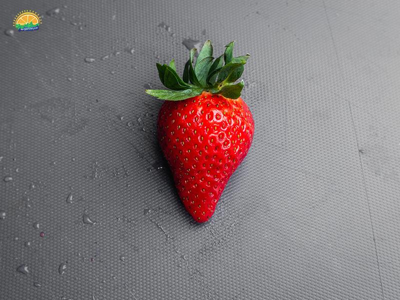 خواص توت فرنگی این میوه جذاب و خوشمزه فصل بهار