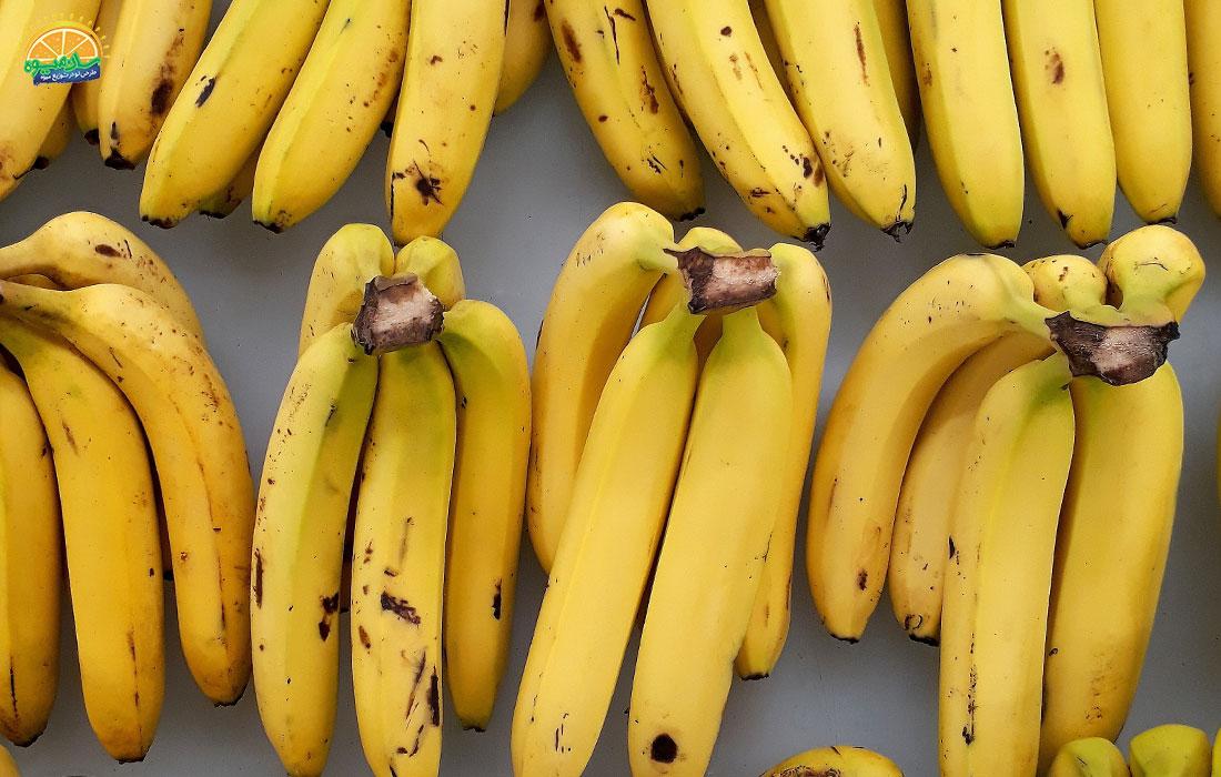 موز زرد نوع رسیده و معمول این میوه است.