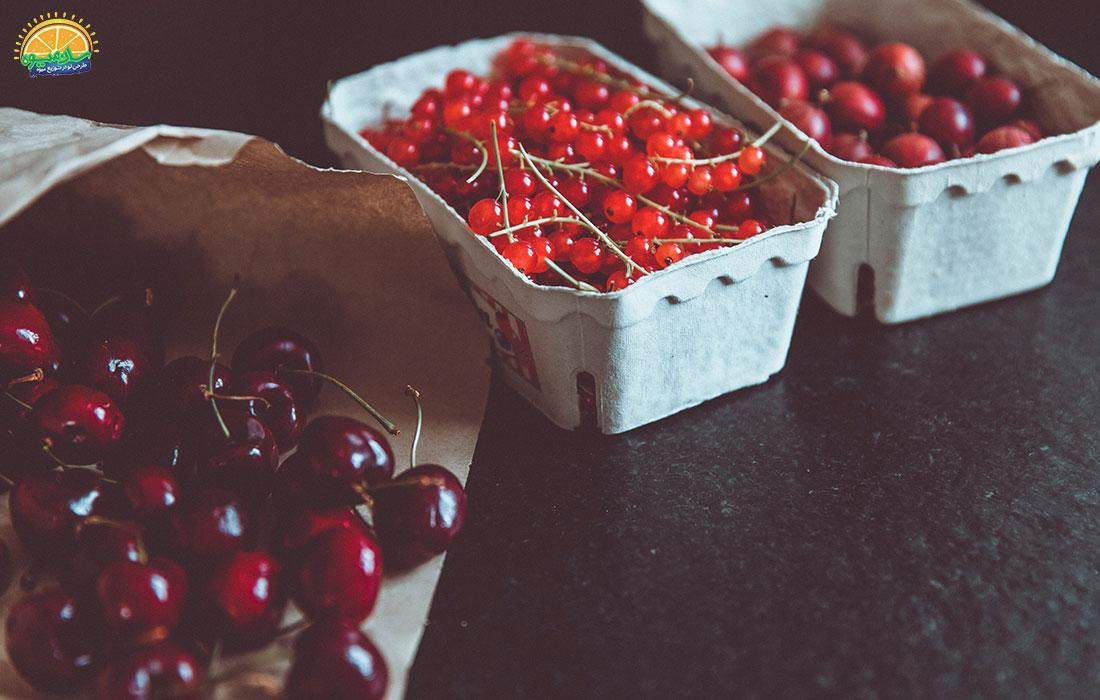 نکاتی برای نگهداری گیلاس-خرید گیلاس از فروشگاه سان میوه